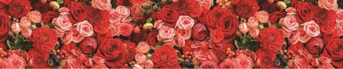 фартук для кухни бутоны разных красных цветов