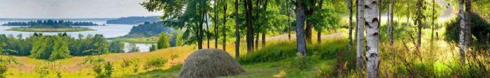 фартук для кухни лес и стог сена река
