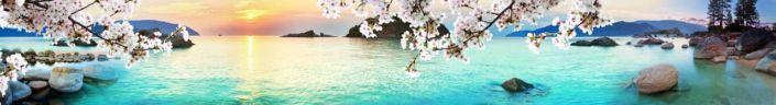 фартук для кухни море и ветка яблони цветущей