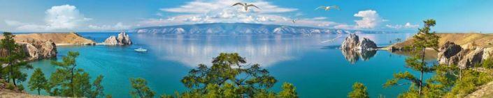 фартук для кухни море чайки небо голубое