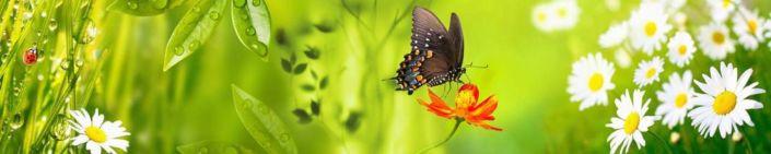 фартук для кухни ромашки и бабочка на зелёном фоне
