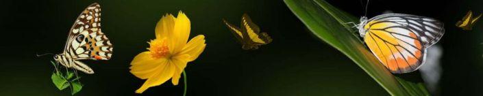 фартук для кухни бабочки и жёлтый цветок