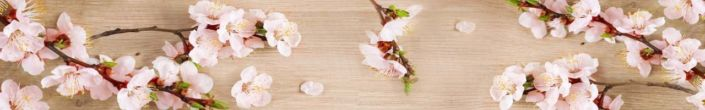фартук для кухни ветки яблони цветения