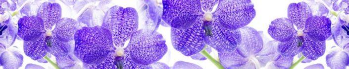 фартук для кухни цветок синий орхидеи