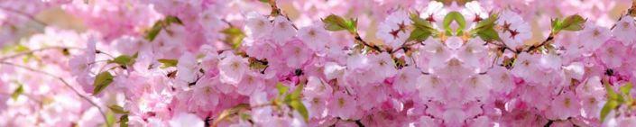 фартук для кухни розовое цветение яблони