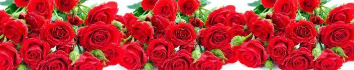 фартук для кухни красные розы