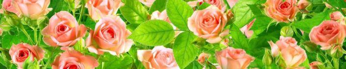 фартук для кухни розы и листья
