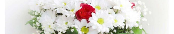 фартук для кухни красная роза белые хризантемы