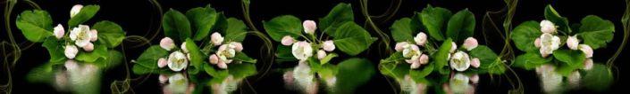 фартук для кухни бутоны распускающихся яблони цветки