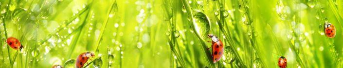фартук для кухни трава роса божьи коровки