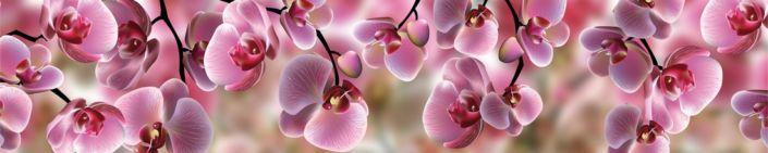 фартук для кухни розовые орхидеи
