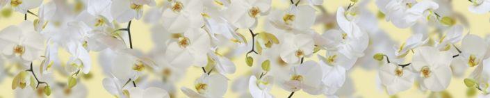 фартук для кухни белые орхидеи