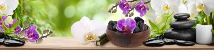 фартук для кухни орхидеи и чёрные камни