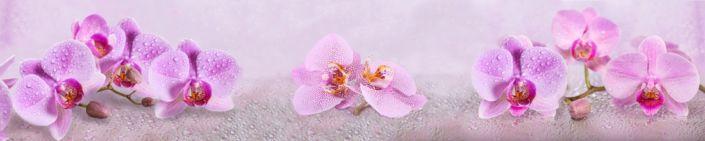 фартук для кухни розовые орхидеи и капли воды