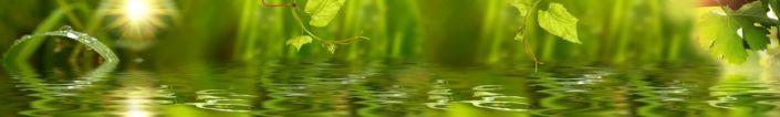 фартук для кухни вода растения зелёного цвета