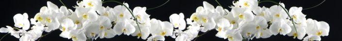фартук для кухни белые орхидеи на чёром