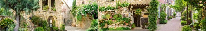 скинали для кухни фрески улочки с зелёнными растениями