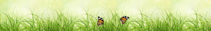 фартук для кухни трава бабочки
