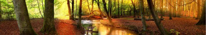 фартук для кухни лес и речка