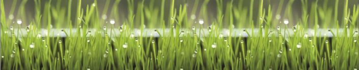 фартук для кухни трава роса