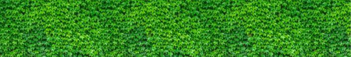 фартук для кухни зелёный плющ