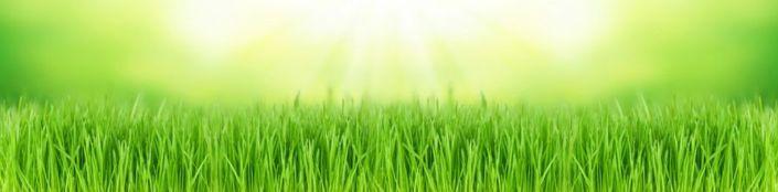 фартук для кухни трава зелёная в солнечный день