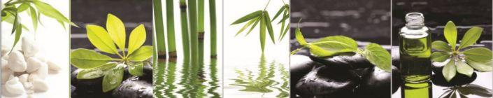 фартук для кухни коллаж растения и камни зелёное в чёрном