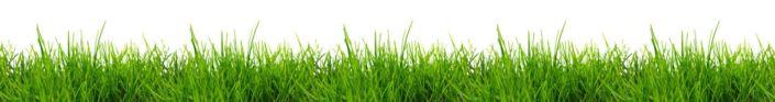 фартук для кухни трава на белом фоне