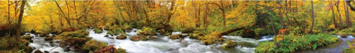 фартук для кухни осенний лес течение реки