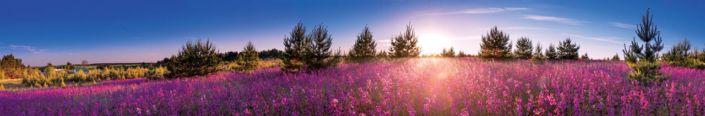 фартук для кухни поле иван-чай небо голубое