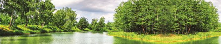 фартук для кухни река лес зелёный
