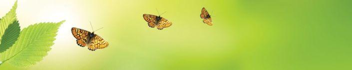 фартук для кухни зелёный с листоком и бабочки