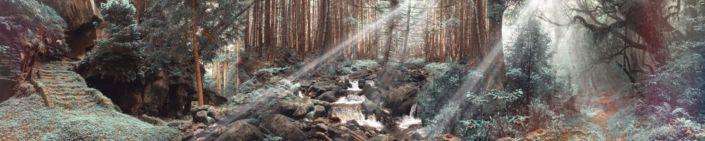 фартук для кухни лес с водопадом солнечные лучи