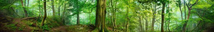 фартук для кухни зелёный лес