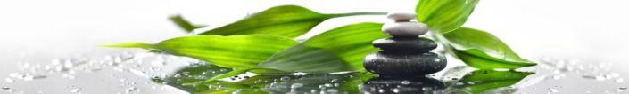фартук для кухни зелёные листья и гладкие камни
