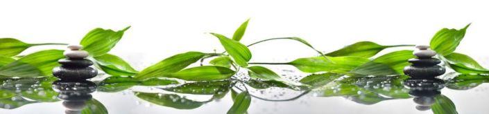фартук для кухни круглые камни и зеленные листья растения