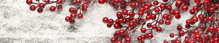 фартук для кухни ветки с красными ягодами на снегу