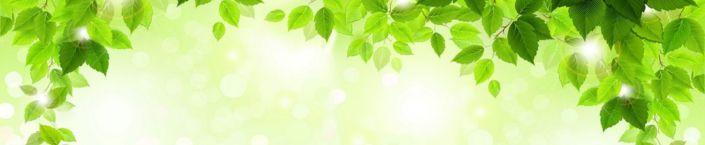 фартук для кухни листья зелёные в солнечный день