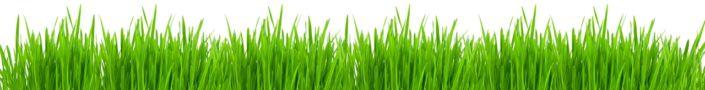 скинали для кухни трава