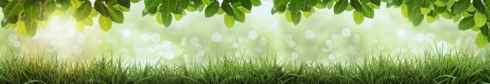 скинали для кухни трава лисья зелёные
