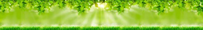 фартук для кухни луг солнечный свет листья