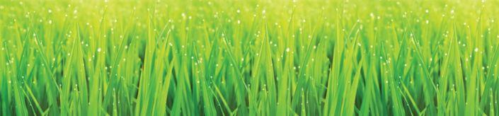 фартук для кухни трава зелёная
