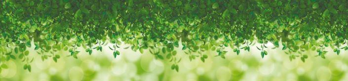 фартук для кухни зелёные листочки