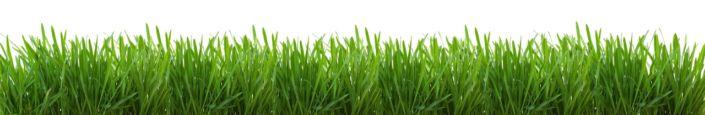 фартук для кухни трава зелёныая на белом фоне