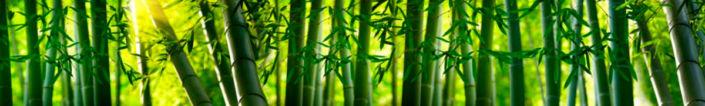 скинали бамбук