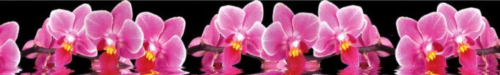 скинали орхидеи